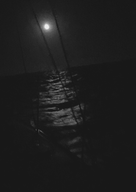 No picture can do justice to the moon at sea...