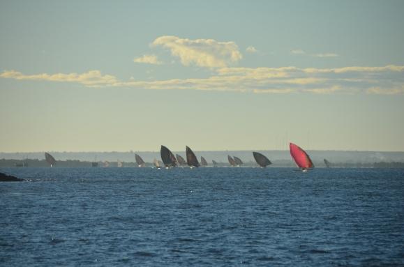 The fleet leaves port each morning